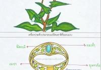 accessories-design2